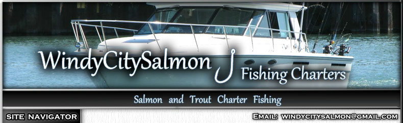 Great Lakes Illinois sport fishing, Chicago Lake Michigan Salmon Charters, and Lake Michigan Fishing Charters. Fishing for Chinook Salmon, Coho, Steelhead Salmon, Lake Trout and Brown Trout with Captain Rick Bentley of Independence Fishing Charters.